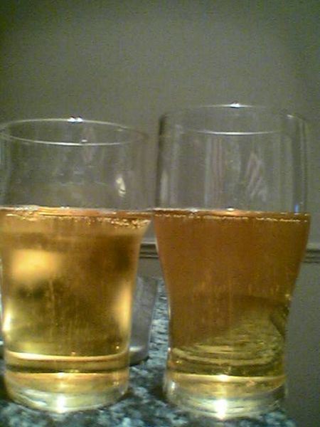 Cider with Ice vs. Cider without Ice - No Ice